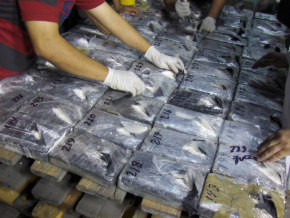 Mexican Authorities seize 500 kilos of cocaine