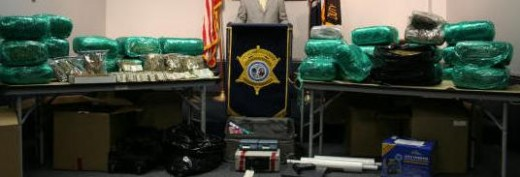 310 lbs of marijuana and $350,000 seized in South Carolina
