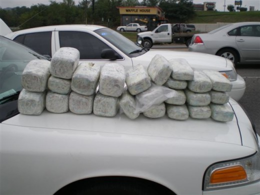 Canine sniffs out 90 pounds of marijuana during a traffic stop