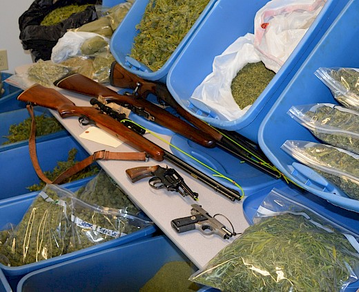 Guns and Marijuana seized in Estacada, OR