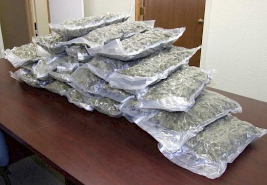 California man arrested in Dalhart, TX with 30 pounds of marijuana