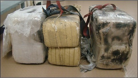 Two Smugglers Attempt to Walk Across Border with 190 Pounds of Marijuana